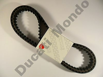 Ducati Cam Timing Belts OEM Monster 900 Supersport ST2 MH900e 907 IE Superlight • 89.96£